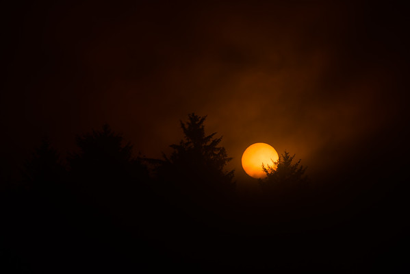Foggy Sunrise - Oregon Coast