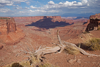 White Rim Trail, Canyon Lands, Moab, Ut
