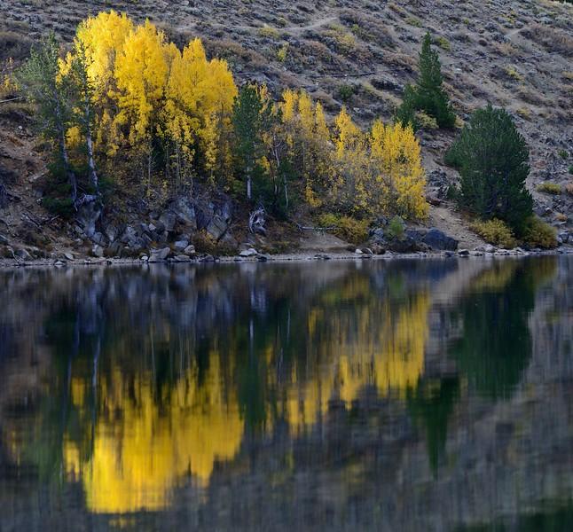 Virginia Lake, CA