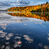 Single fallen red maple leaf floating in the foreground with a reflection of autumn trees on Moose Pond near Lake Placid, Upstate New York