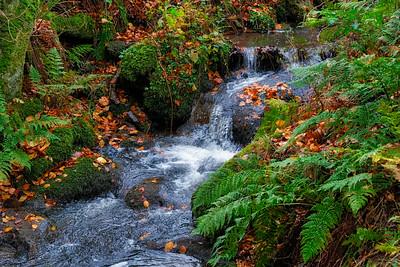 Small Scottish Stream or waterfall.
