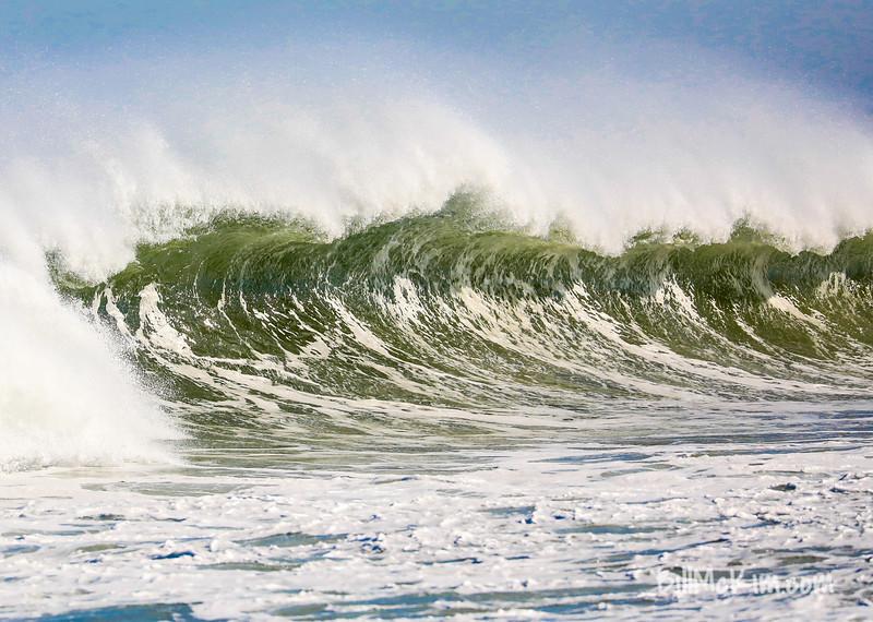 west wind surfs up-0894