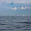 Bill McKim jersey shore whale watch tour (673 of 637)