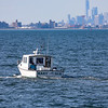 Jersey shore whale watching bill mckim june25th-4635