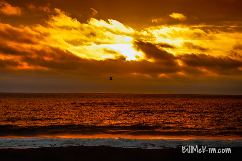 Brilliant sunrise-261