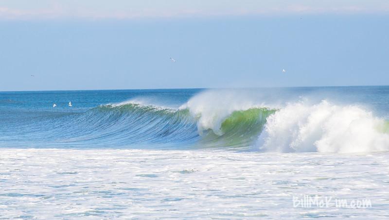 #surfers #surfing #surf #winter-3982
