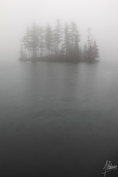Foggy island, on Mountain Lake, Orcas Island, WA