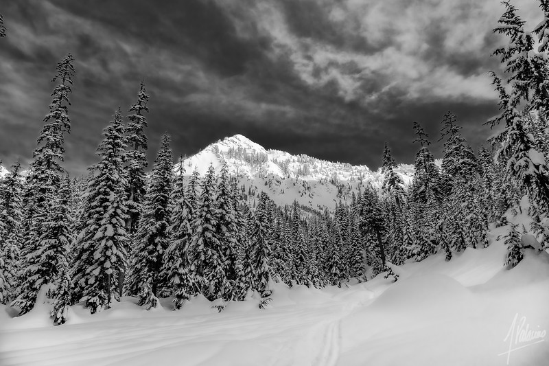 Red Mountain, in Black and White - Commonwealth Basin trail, WA
