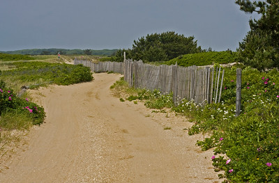 Beach road on Nantucket