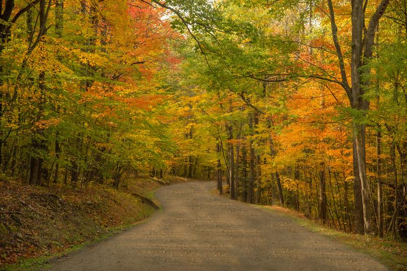 Winding Into Autumn