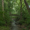 North Carolina Botanical Gardens