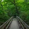 Bridge To The Top