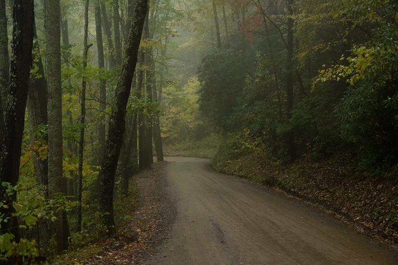 The Road To Cataloochee