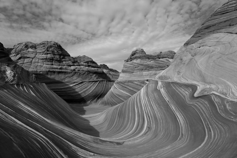 The Wave-Ryan Gebman