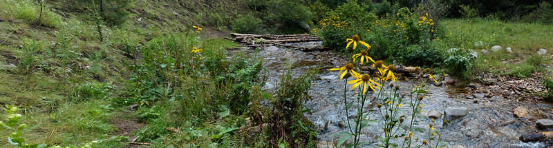 Panorama of the south fork of the Bonito River