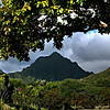 NOV 14 2012<br /> Hard to work when you have a view like this.<br /> One of the mountains behind Kualoa Ranch, OAHU Little of Hawaii