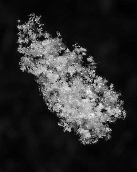 Falling Snowflake
