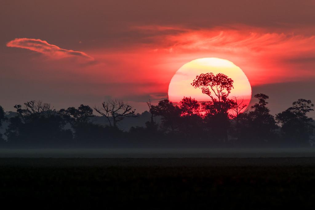 IMAGE: https://photos.smugmug.com/LandscapesNature/i-gs8XTGb/0/bd32d61d/XL/Sunrise%2008212019-5061-XL.jpg