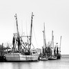 Parked Shrimp Boats