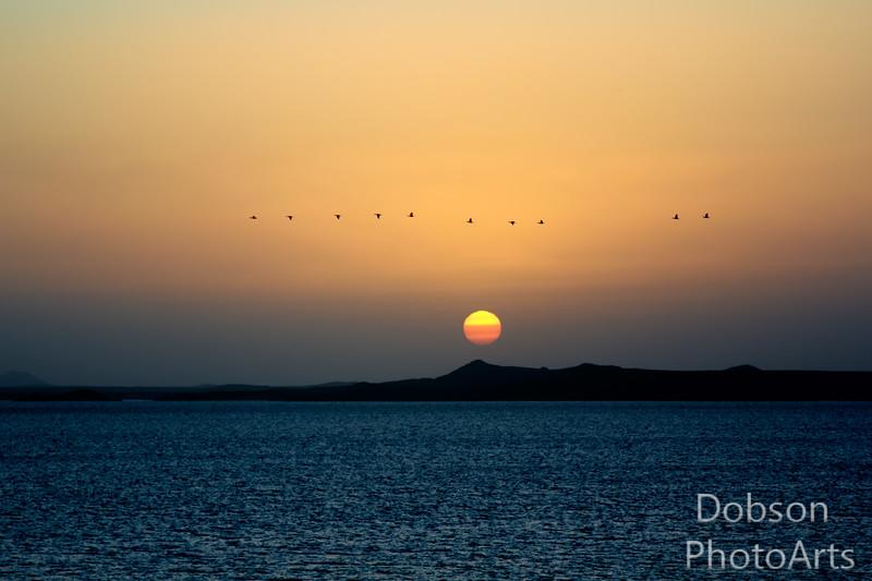 Lake Nasser at Dawn