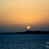 Lake Nasser at Dawn