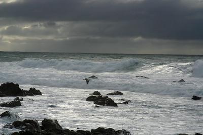Carmel/Monterey area