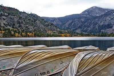 Fall colors at Silver Lake - June Loop off Highway 395.