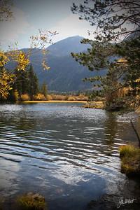 Fall colors at Silver Lake, Ca.  (June Loop off Highway 395)