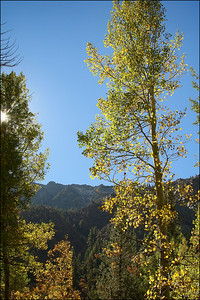 Lundy Lake - Eastern Sierras