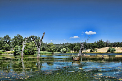 D'Agostini Reservoir, Amador County, Ca