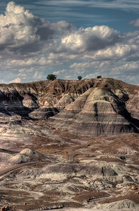 Painted Desert/Petrified Forest - Arizona