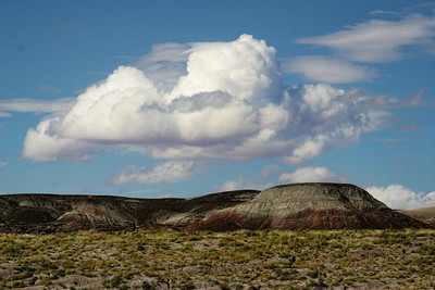 Painted Desert/Petrified Forest, Arizona