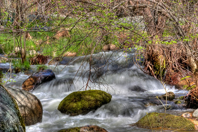 East fork of the Chowchilla River - Mariposa, CA