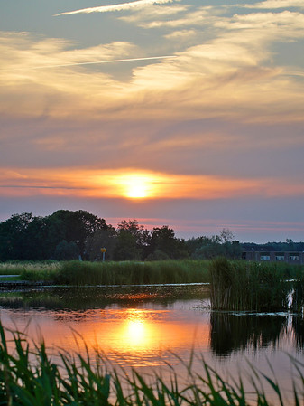 Landscapes Summer / Landschappen zomer