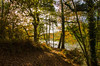 Forest of Dean LR_019