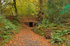 Forest of Dean LR_074