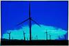 Energy windmills near Rio Vista, Ca.