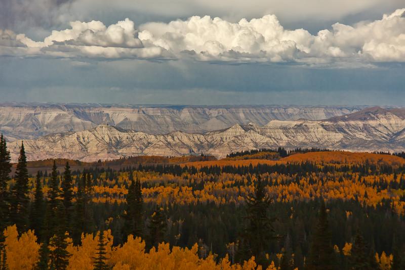 Grand Mesa Fall Colorado