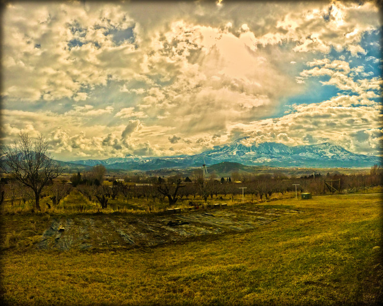 Early Spring orchard with very interesting clouds