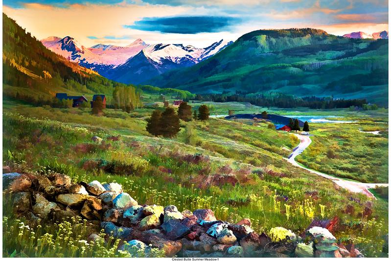 Summer Colorado meadow