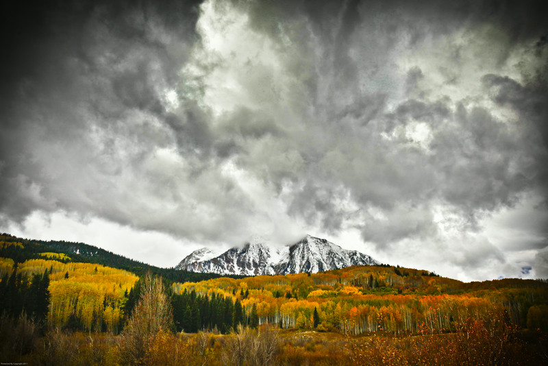 Fall glory, Kebler Pass Colorado