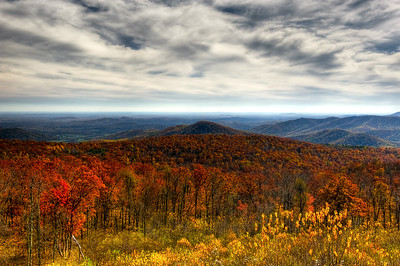 Skyline Drive Overlook