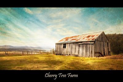 Cherry Tree Farm - Tasmania, Australia