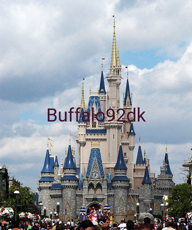 Disney Photo Captures  February 2011