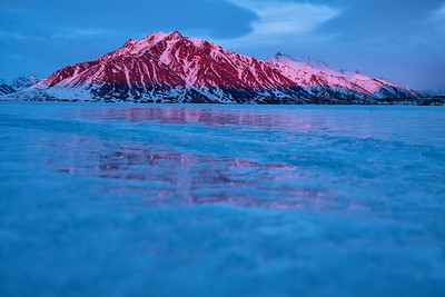 Alpine glow on a frozen creek at the North end of the Brooks Range. The wolverine study, by the Wildlife Conservation Society's team, was conducted on the wolverine dense land at the edge of the Brooks Range and North Slope.