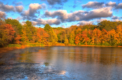 Fall in Norfolk, MA