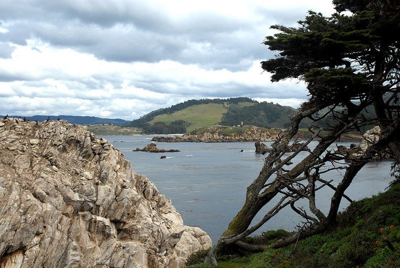 Looking north from Guillemot Island to Palo Corona Ranch