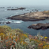 Sea Lon Cove to Sea Lion rocks