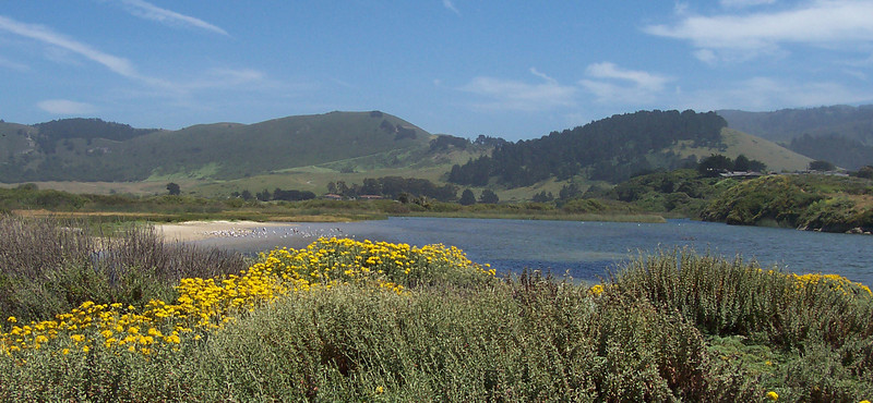 Carmel River Lagoon and Wetlands Natural Preserve.