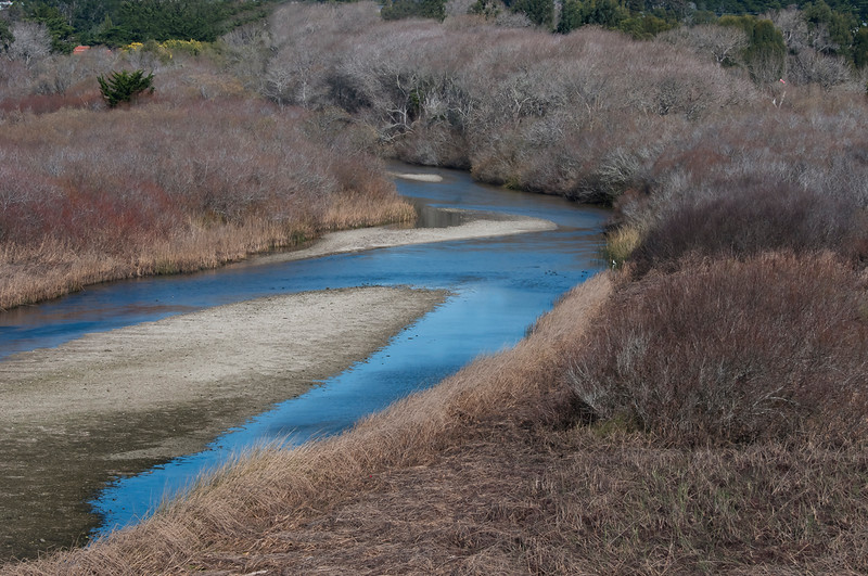 Carmel River Lagoon and Wetlands Natural Preserve